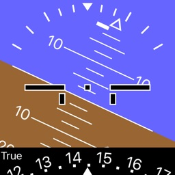 iBFD (integrated Backup Flight Display)