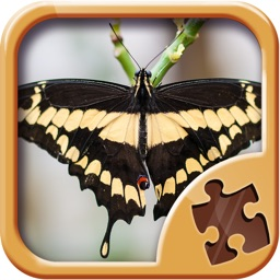 Butterfly Jigsaw Puzzles - Cool Puzzle Games