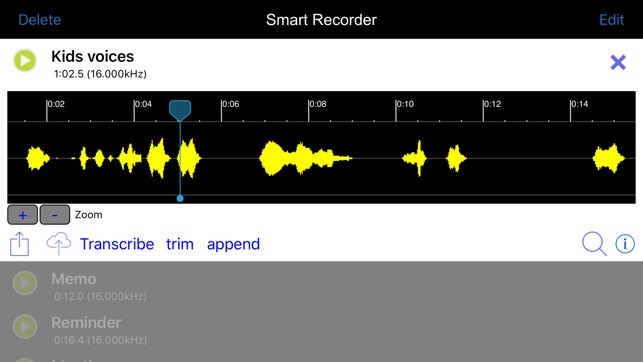 Smart Recorder Transcriber AF Screenshot