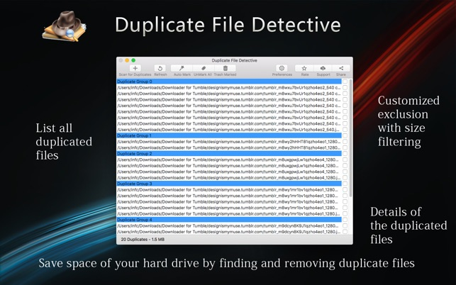 duplicate file detective download