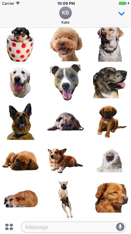 Dogs evolution screenshot-3