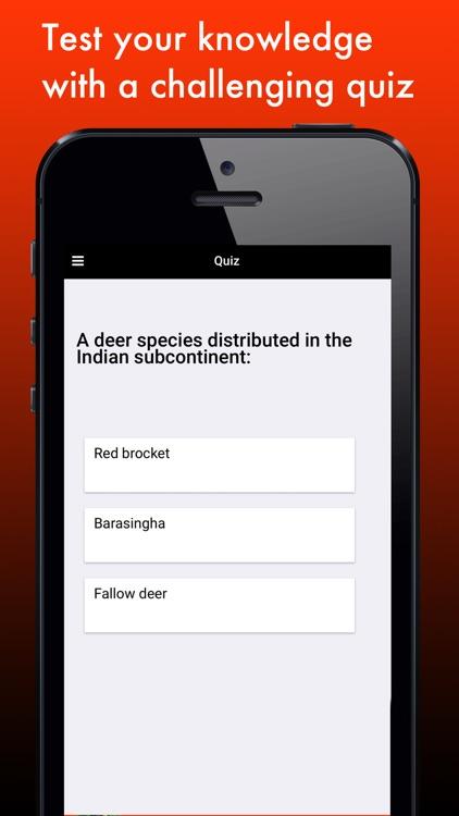 Deer Species: Amazing Creatures of the Forest screenshot-3