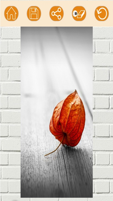 Efectos de color – blanco y negro foto editorCaptura de pantalla de5