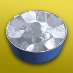 Steelpan 3D