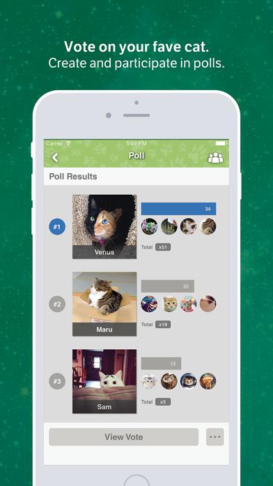Amino for: Cats and Kittens screenshot three