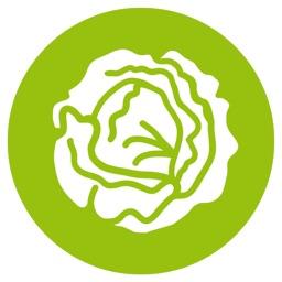 Lettuce Advisor