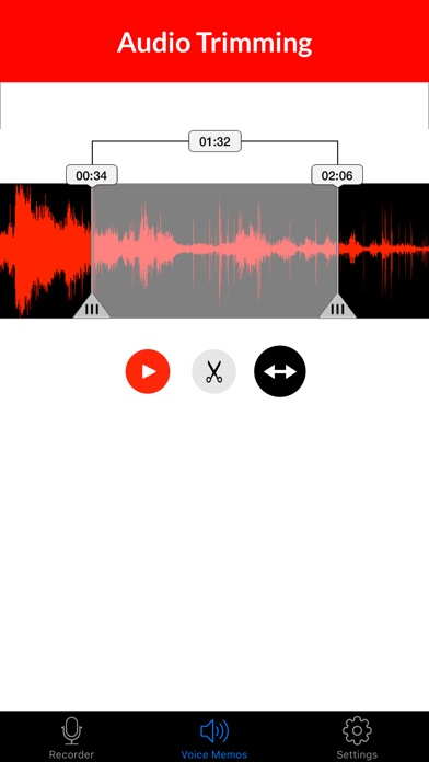 Voice Recorder & Audio Memos Preview 2