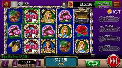 DoubleDown Casino Slots & More iPhone