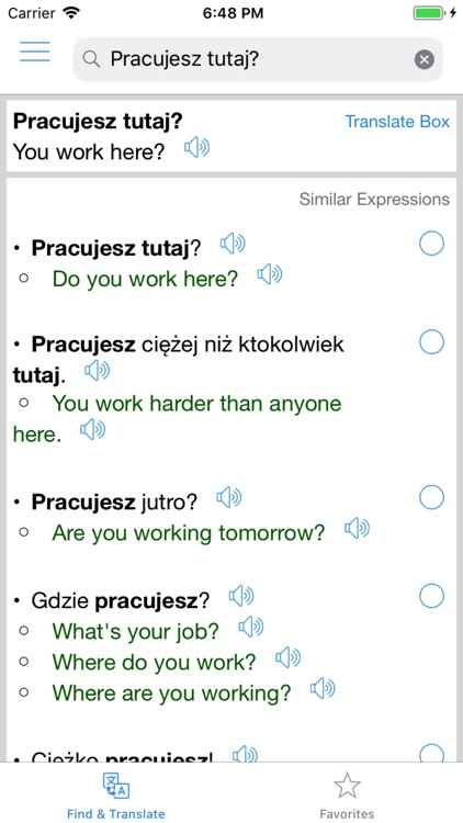 Polish Translator Offline
