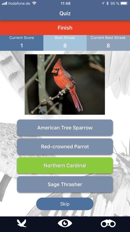 Bird Id USA backyard birds screenshot-5