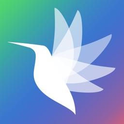 飞鸟贷-极速贷款app