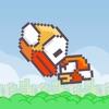 Flappy Crash Bird