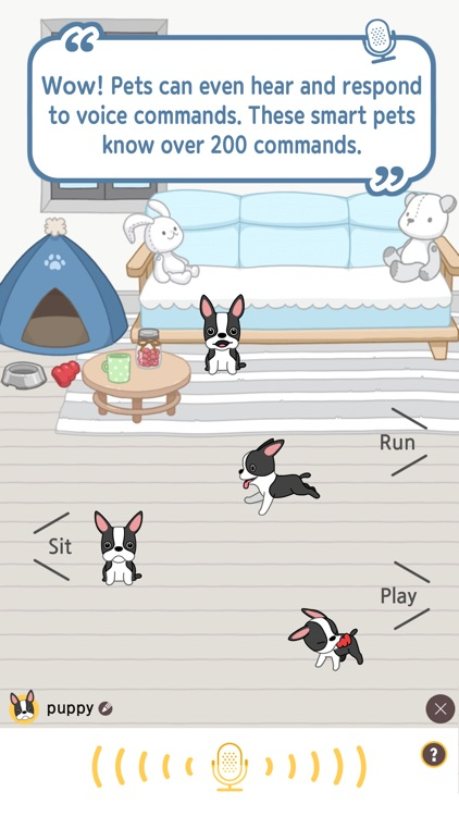 Hellopet screenshot-2