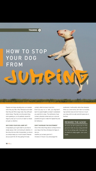 Good Dog (Magazine) screenshot 2