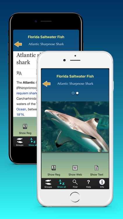 Florida Saltwater Fish screenshot-3