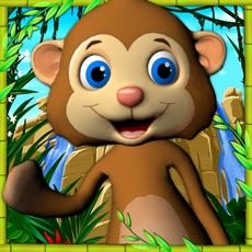 Activities of Talking Monkey Pet