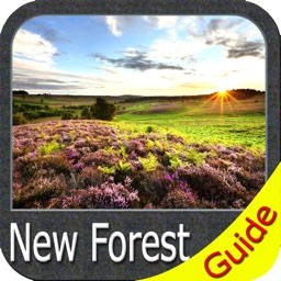 New Forest National Park - GPS Map Navigator