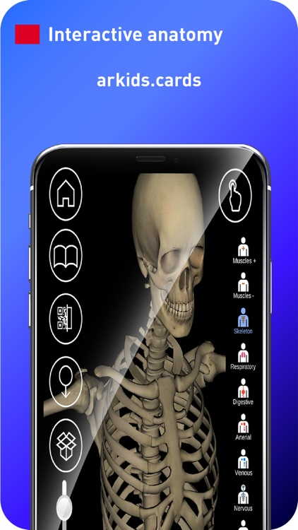 AR Anatomy 4D+ screenshot-3