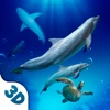 Underwater Animals Survival