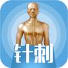 中医3D铜人-针刺