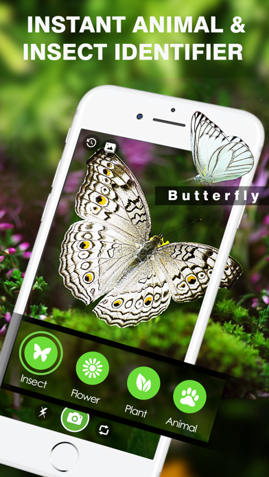 Smart Identifier: Plant+Insect