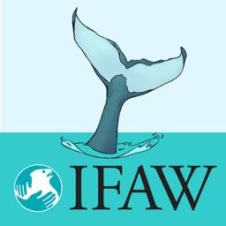 IFAWmojis Marine Mammals