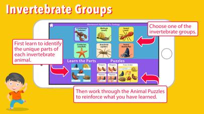 Parts of Invertebrate Animals screenshot 2