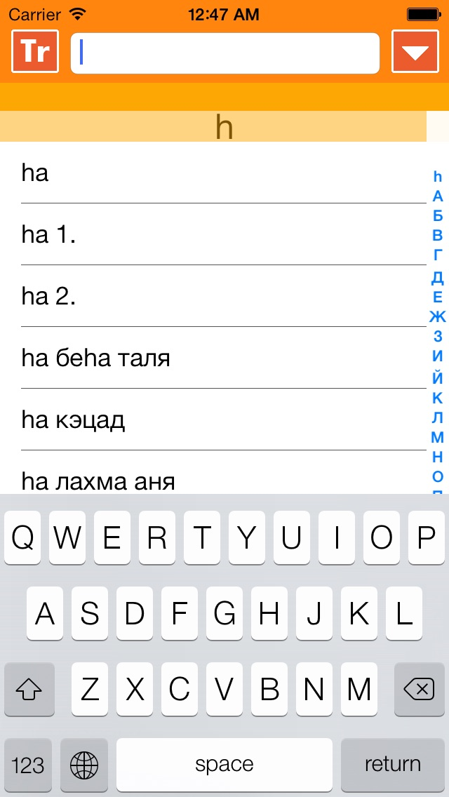 IRIS - mobile hebrew russian hebrew dictionary Screenshot 4
