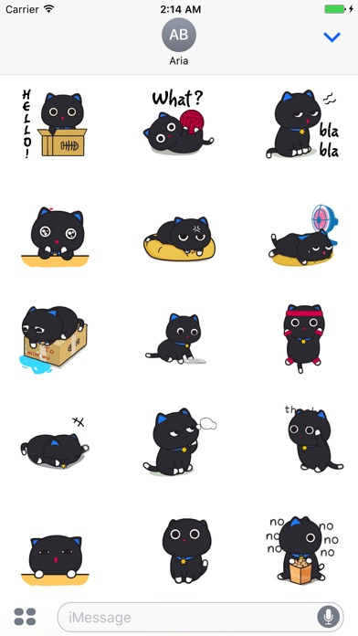Animated Black Cat and Potato