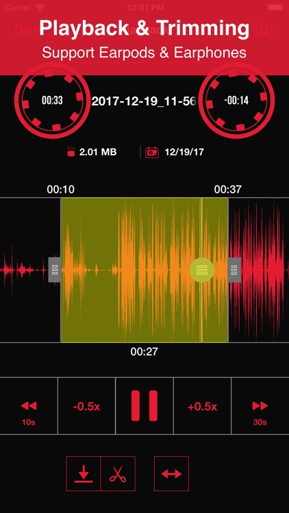 Recorder App Lite screenshot-1