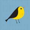 Little bird yoga