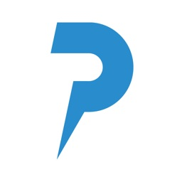 Pinbloop Punchlist