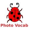 English Vocab : Picture Quiz