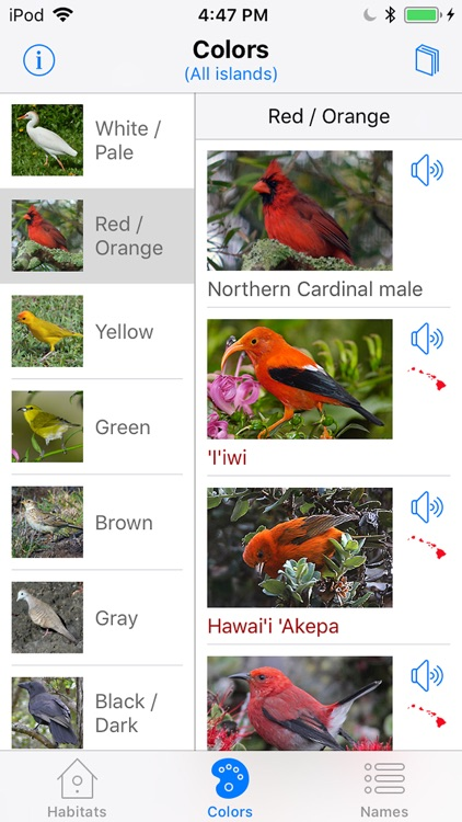 Bird ID Hawaii for iPhone
