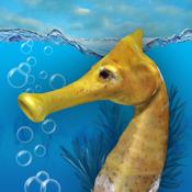Seahorse 3D icon