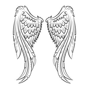 Angel Crime Alerts app