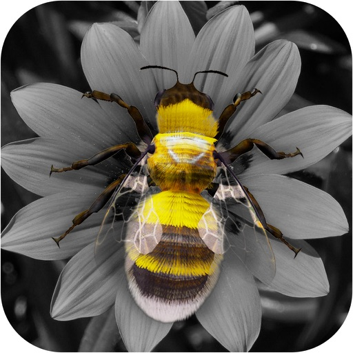 Effect Lab - Add Colors, Photo Editing Effects, like color, blur and Filters to edit Photos and Pictures w/ camera iOS App