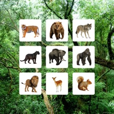 Activities of Jungle Sudoku - Puzzle Game