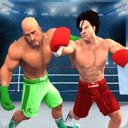 Boxing KO: The Career Boxer