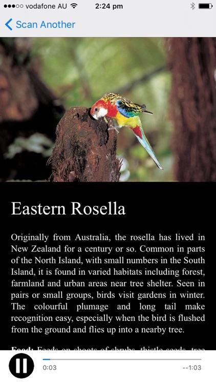 NZ Bird Calls screenshot-4