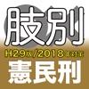 辰已の肢別本 H29版(2018年対策) 憲民刑 - iPhoneアプリ