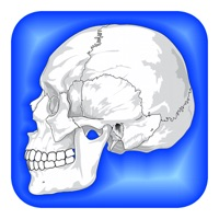 Codes for Human Body Facts 1000 Fun Quiz Hack