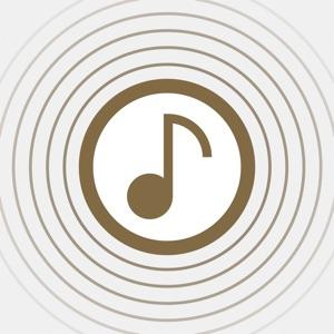 Wireless Audio Multiroom iPad