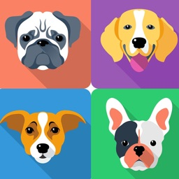 Dog Breeds Guide & Quiz