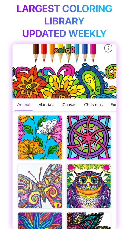 coloR Coloring Book for Adults