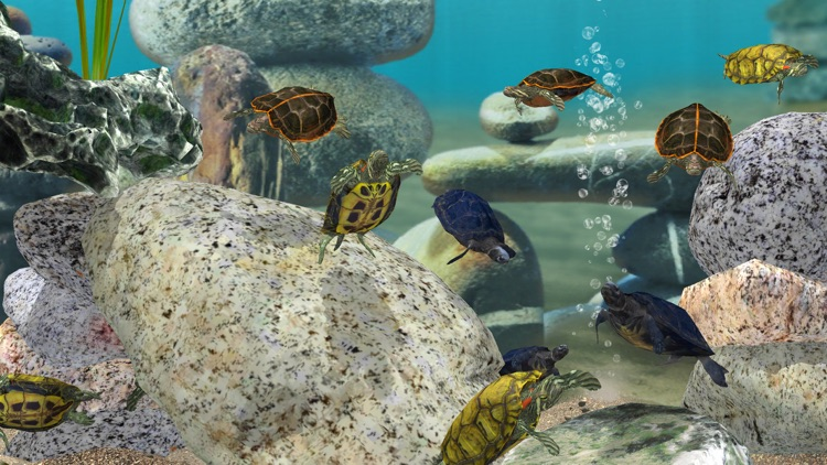 Fish Farm 3 - Aquarium screenshot-3