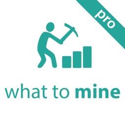 ProfiMine Pro: What to mine?