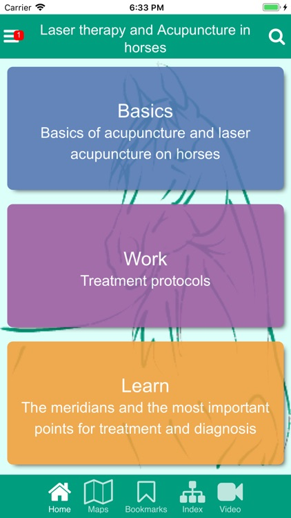 ACUPUNCTURE & LASER ON HORSES