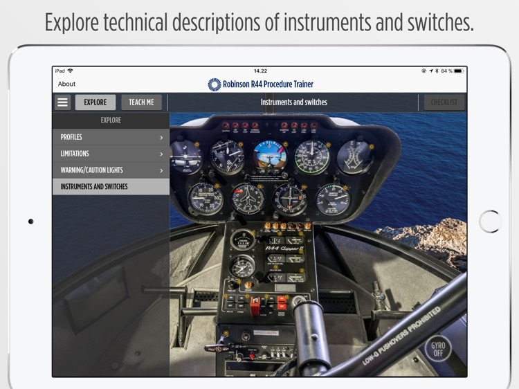 Robinson R44 Procedure Trainer