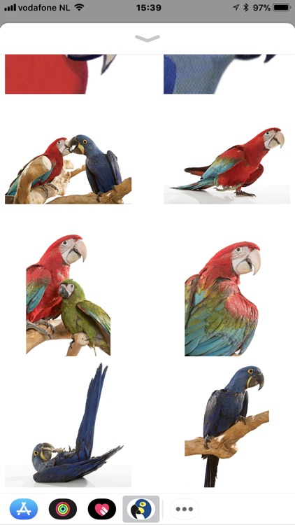 Macaw Stickerpack